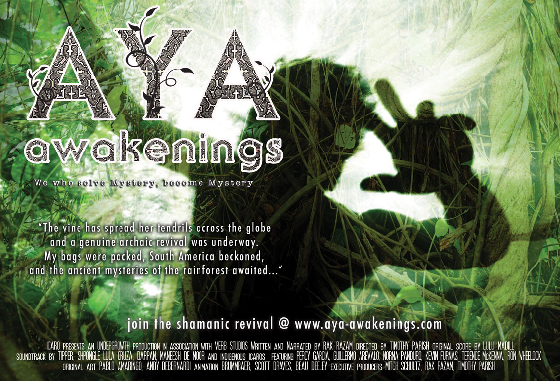 AYA: Awakenings USA tour Jan-Feb 2014