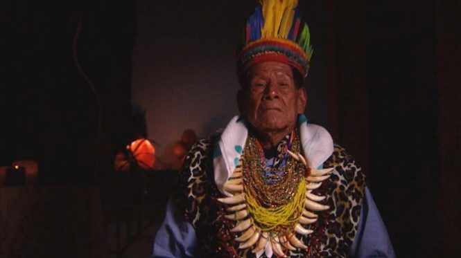 Representatives of the Cofán people issue a statement about Ayahuasca International