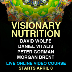 Visionary-Nutrition-240x240