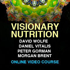 Visionary-Nutrition-banner-240x240